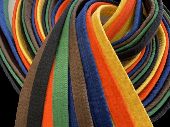 cinturon kaiten bicolor