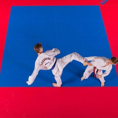 tatami itf taekwondo